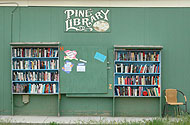 Phto of the Pine Library